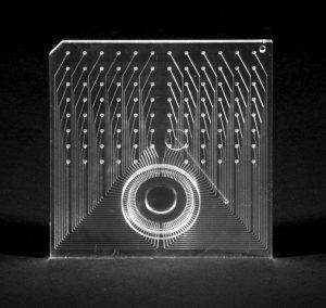 Micro fluidic manifold chip